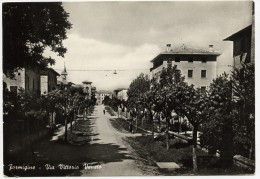 Formigine (Modena). Via Vittorio Veneto. - Modena