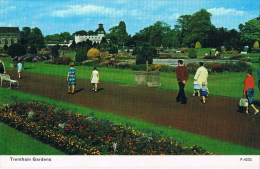 Trentham Gardens P 4202 - Inglaterra