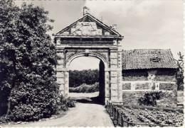 Holsbeek Ruine Kasteel Attenhoven - Holsbeek