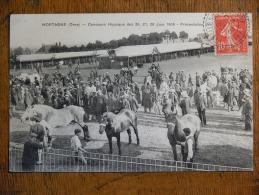 MORTAGNE-au-PERCHE (61) - Concours Hippique Des 26, 27, 28 Juin 1908 - Présentaition - Hippodrome - Mortagne Au Perche