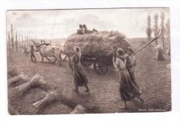 RITORNO DALLA MIETITURA Cartolina Augurale Per Le Case Del Pane  From Pasturo To Rome 17-8-07 Very Fine - Agriculture