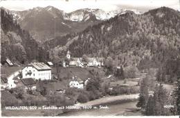 AK 0027  Wildalpen Mit Hochkar - Verlag Ledermann Um 1959