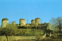 Echiré Les Ruines Du Chateau Coudray Salbart CPM Ou CPSM - France