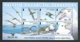 British Antarctic Territory BAT 2005 Birds Giant Petrel Sheetlet Of 6, MNH - Unused Stamps