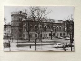 Timisoara Muzeul Viaggiata F.p. - Romania