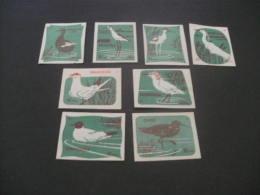 428- Hinged  Hungary -  MSZ  -birds  - Green - Matchbox Labels