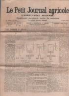 LE PETIT JOURNAL AGRICOLE 27 08 1905 - MOTEURS A PETROLE - TREFLE A GRAINE - YUCCA - JUGES DE PAIX - CHAMPIGNONS - VIN - Newspapers