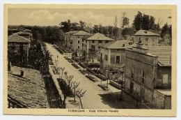 Formigine (Modena). Viale Vittorio Veneto. - Modena