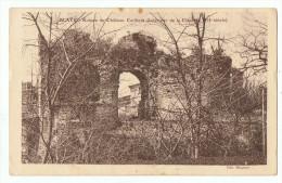 Blayes    Ruine Du Chateau Caribert - Blaye