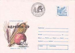 3902 AGROFILA 89 JIMBOLIA  1989, ROMANIA - Mushrooms