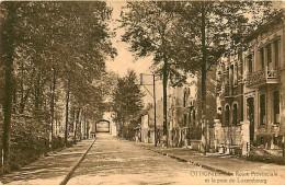 Ottignies.  Route Provinciale Et Le Pont Du Luxembourg - Ottignies-Louvain-la-Neuve