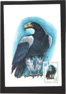 Carte Maximum - Oiseaux - Russie - U.R.S.S. Rapace - 1982 - Congrès International D'Ornithologie - Águilas & Aves De Presa