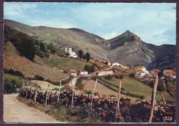 CPSM    PAYS BASQUE  Le Pic De Behorleguy     Num  SO  821   Cachet Le 28 6 1972 - Unclassified