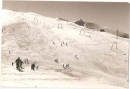 NEVEGAL ( BELLUNO ) SCIOVIA DEL COL TORONT - RIFUGIO A. BRISTOT - FOTO BURLONI  1960s  (700 ) - Belluno