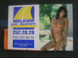 Calender Calandrier Calendario - 1997 -  Femme Denude ( Pin-up / Starlette ) - Petit Format : 1991-00