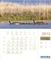 2012 Calendrier Page Kalender Blz Calendar Page / 11.7 X 13.3 Cm Carton Glacé / Oie Canada Gans Goose - Calendari