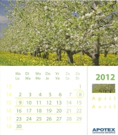 2012 Calendrier Page Kalender Blz Calendar Page / 11.7 X 13.3 Cm Carton Glacé / Arbres En Fleur Bloesem Blossom - Calendarios