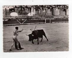 Corrida De Toros - Une Belle Estocade.  2 Scan - Unclassified
