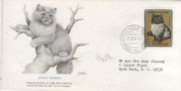 MONGOLIA  OULAN BATOR  Le Chat Persan  6/10/92 - Domestic Cats