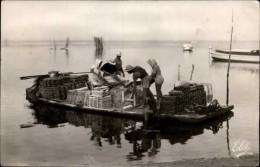 33 - Bassin D'ARCACHON - Ostréiculture - Arcachon