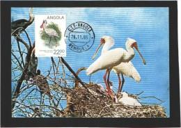 Carte Maximum - Oiseaux - Angola - Spatule D'Afrique - 1985 - Storks & Long-legged Wading Birds