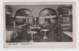 ALLEMAGNE HÔTEL PENSION CAFÉ CAROLA NETZSCHKAU - N° 4364 - WALTER WUSTLICH - 2 Scans - - Germany