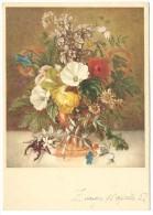 """1951, Zurigo, Illustratore  Emanuel Steiner - """"Fiori Farfalle Et Scarafaggio"""". - Illustrateurs & Photographes"""