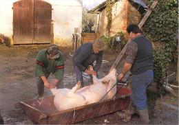 40 Landes (Montfort En Chalosse) NOUSSE (2)  Tuaille Du Cochon Chez BERLON  * PRIX FIXE - Montfort En Chalosse
