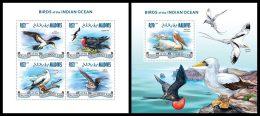 MALDIVES 2013 - Birds Of Indian Ocean - YT 4051-4 + BF613; CV = 29 € - Birds