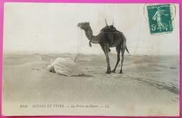 Cpa N° 6158 La Prière Au Désert Scènes Et Types Carte Postale Algérie1910 Prayer In The Desert - Algérie