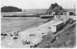 CPSM : Algérie , Tigzirt Sur  Mer , La Plage , Le Port - Andere Städte