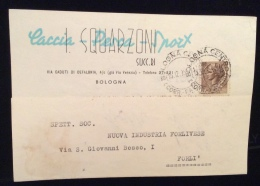 ARMI MUNIZIONI CACCIA PESCA - CARTOLINA PUBBLICITARIA - I.SQUARZONI - BOLOGNA - Werbepostkarten