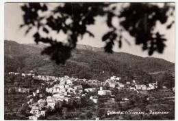 GRIMALDI - COSENZA - PANORAMA - 1965 - Cosenza