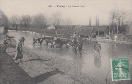VATAN  36 ( LE GRAND GUE ) SCENE AGRICOLE VACHES - Sonstige Gemeinden