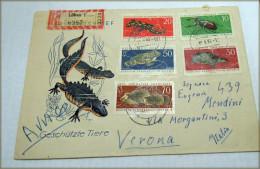 DDR 1963 Geschützte Tiere Michel-Nr.: 978/82   RARE ITALIA VERONA Part N°2 - Non Classés