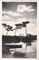 29. Pf. QUIMPER. Paysage Sur L'Odet. 76 - Quimper