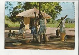 86522 AFRICA PREPARAZIONE DEL MIGLIO MOZAMBICO - Mozambico