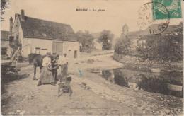 MOUSSY Ferrage Par Maréchal Ambulant - France