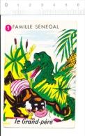 Humour Crocodile Animal / Sénégal  // IM 126/54 - Vieux Papiers