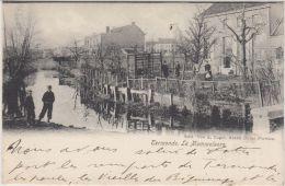 24302g MOMMELAERE - Termonde - 1909 - Dendermonde