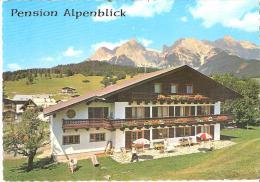 AK 0030  Maria Alm - Pension Alpenblick , Josef Schwaiger Um 1970-80 - Hotels & Gaststätten