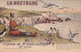 CPI 56 @ SAINT GILDAS De RHUYS @ Légende Du XII ° Siècle - Saint Gildas Nourrissant Les Oiseaux @ Mouettes Oiseau De Mer - Other Municipalities