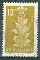 Bulgarien 1965 Mi. 1528 Gest. Tabak - Tabak