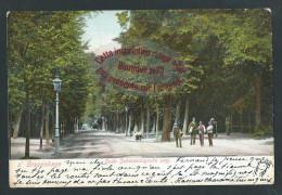 L226 - S GRAVENHAGE Oude Scheveningsche Weg - 1904 - Den Haag ('s-Gravenhage)