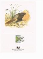 C1020 WWF VOGELS BIRDS OISEAUX VÖGEL AVES DUIF DOVE TAUBE MAURITIUS 1985 PROOF EDITIONS - Autres