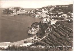 PONZA ( LATINA ) SPAIGGIA DI GIANCOS E VEDUTA DEL PORTO - EDIZIONE MANNA - 1960 ( 748 ) - Latina