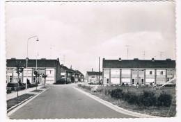 B5382   NIEL : Rode Kruisplein - Niel