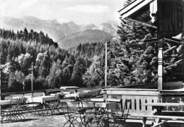 BG2189 Waldherr Alm Bad Tolz Benediktenwandgruppe   CPSM 14x9.5cm Germany - Bad Toelz