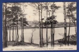 22 TREGUIER Panorama De La Ville, Vu De La Vallée De Turzunel - Ambulant - Tréguier