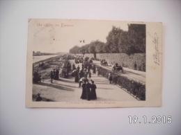 Firenze. - Cascine.II Viale Della Regina. (13 - 5 - 1905) - Firenze